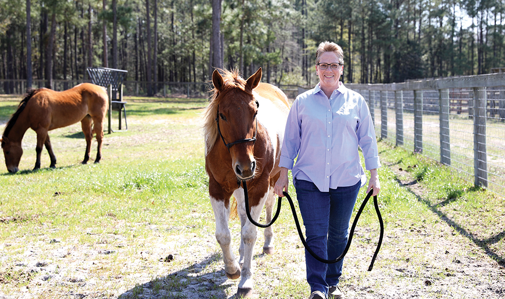 Wilma 0421 Teachinghorse
